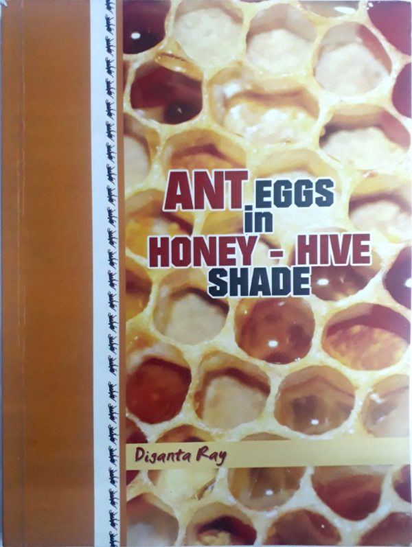 Ant Eggs in Honey-Hive Shade